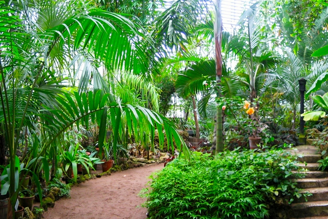 Студенты Духовной Академии посетили Ботанический сад Петра Великого