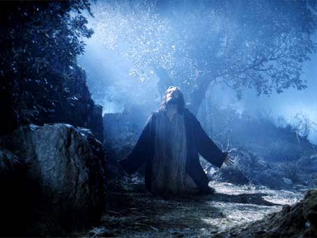 «Днесь висит на древе, Иже на водах землю повесивший; венцем от терния облагается, Иже Ангелов Царь; в ложную багряницу облачается, одевающий небо облаками; заушение принимает, Иже во Иордане свободивый Адама; гвоздьми пригвождается Жених Церковный; копием пронзается Сын Девы...»
