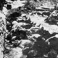 М. Шкаровский. Репрессии 1930-Х ГГ. против священнослужителей Северо-Запада России.