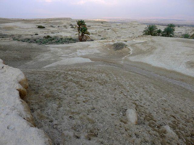 Таинство пустыни