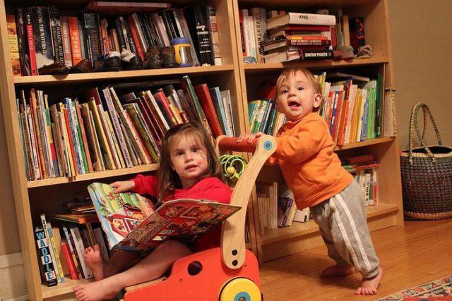 Домашняя библиотека как идея и педагогический метод