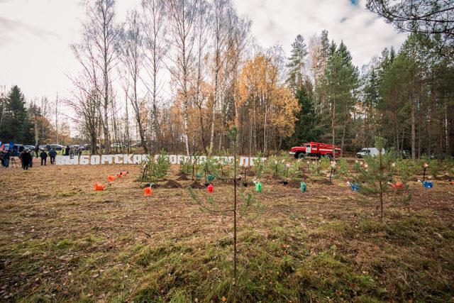 Ректор Академии принял участие во Всероссийской экологической акции